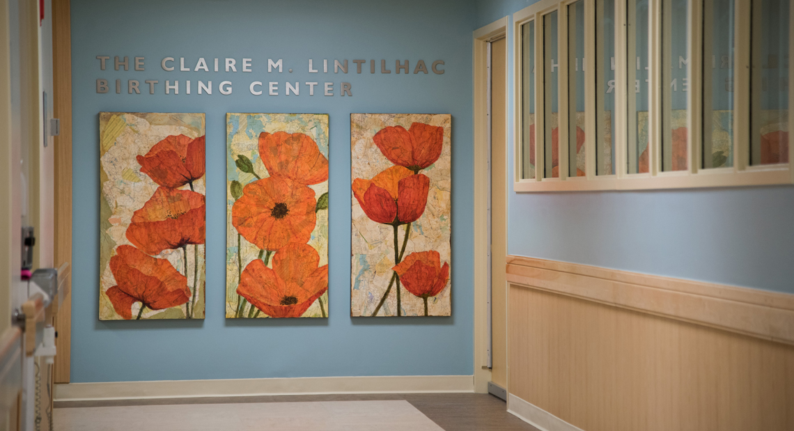 UVM Medical Center Birthing Center poppy paintings