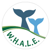 Office logo of W.H.A.L.E