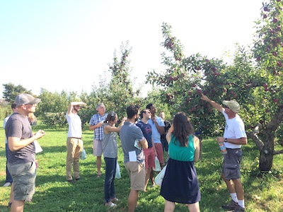 Internal Medicine residents apple picking.