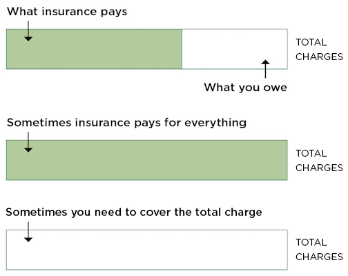 Insurance Estimate